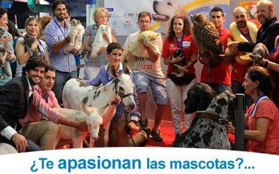 Feria mascotas Málaga en el Palacio de Congresos