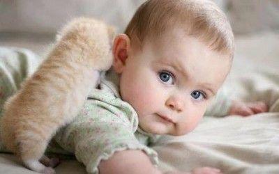 La ternura de los gatos con los bebés