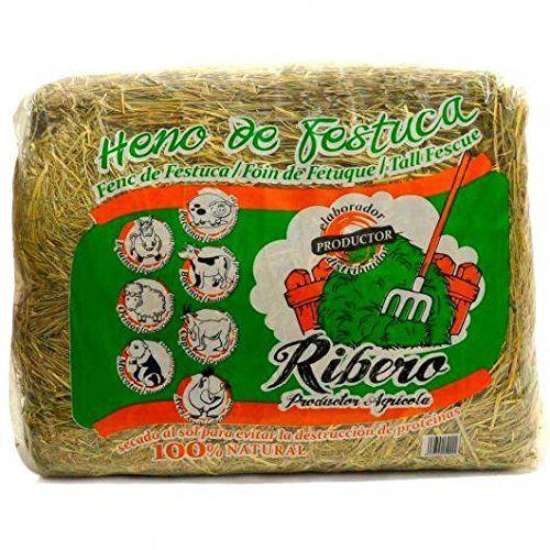 Heno de Festuca 10 kg. conejos y roedores