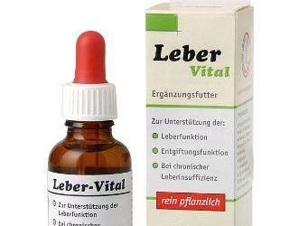 AniBio hígado Vital 30 ml (gotas) Alimento complementario para perros y gatos, 1er Pack (1 x l 0:03)