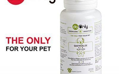 Salud gastrointestinal para tu mascota, indicado para intestino irritable, gusanos intestinales, lombrices en perros, alternativa natural a los medicamentos para enfermedades de perros, aloe vera para gatos y perros DAONLY