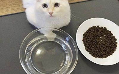 G.G.G. Simple Perro De Mascota De Alimentos Para Gatos Alimentando La Estera De Grado Alimentario De Silicona Impermeable Anti-Fugas Antideslizante Bowl Place Mat Grandes (gris) , mascotas