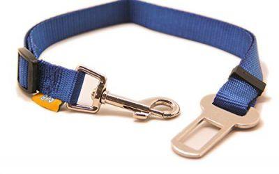 BPS(R)Cinturón de Seguridad de Coche ,Ajustable para Perro,Color:Azul Oscuro ,Azul Claro,Verde y Rojo,Safety Belt para Cachorro Gato Gata Mascotas Animales,Tamaño:(2.0 x 40/58cm).