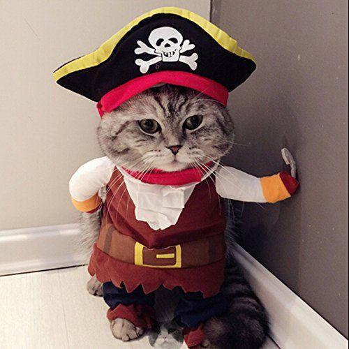 Disfraz de pirata para mascota, gato, perro, divertido con sombrero
