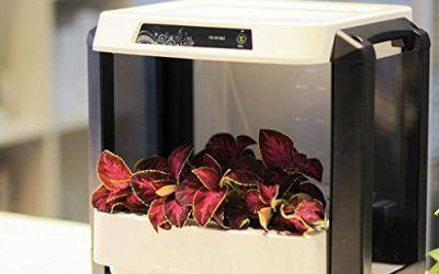 Aero Jardín Cosecha y Alimentos Hierbas Semillas Pod Set Máquina de Plantación Automática Smart Home Nursery Box Tamaño 417 * 316 * 446mm , mascotas