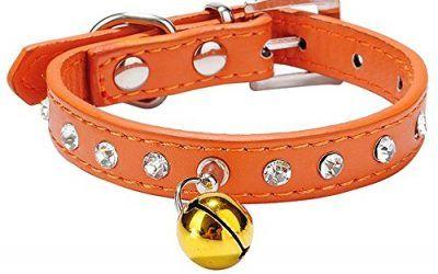 Leetop Collar Correa Cuero del Rhinestone PU Ajustable para el Gato Perro Perrito Collares,Cachorro y Collar de Gato(Orange) , mascotas