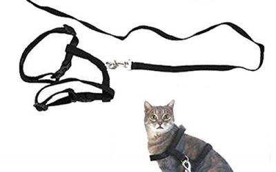 Ajustable Mascota Gato Gatito Plomo Correa Arnés de nylon cuello Cinturón Safty formación