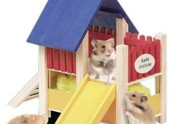 Karlie Wonderland Parque infantil