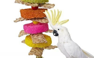 Natural Loofah pajita trenzado Masticar juguete para loro guacamayo africana Greys Budgies periquito Cockatiels cacatúa Conure amor pájaro jaula juguete