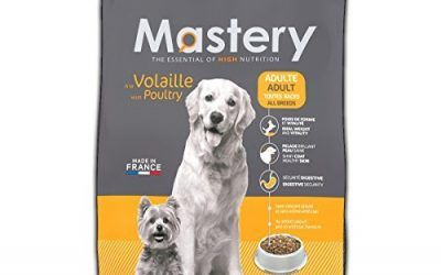 Mastery Comida para perros Adulto Aves De Corral, Comida Seca Para Adultos Perros – 3 kg