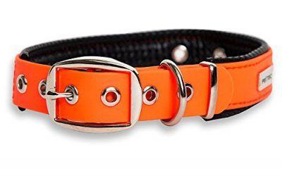 PetTec Collar para Perro Hecho de Trioflex Acolchado, Naranja, Impermeable, Resistente al Agua, Correa Robusta para Perro