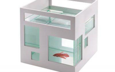 Umbra 460410-660 Pecera de cristal Fishhotel , mascotas