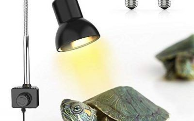 DADYPET Iluminación para Tortuga, Basking Lámpara de Calor Halógena UVA UVB de 25W Reptiles Acuario de Tortuga Lagarto