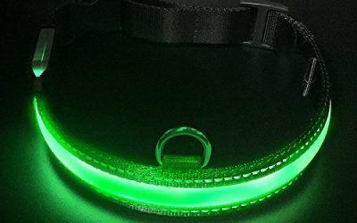 LED Collar para Perros, LaRooTM Intermitente Llevó Collar de Seguridad para Perros de LED de Nylon Luminous Que Brilla en la Noche Collar Brillante de Seguridad para Los Perros – M( 40-50CM)