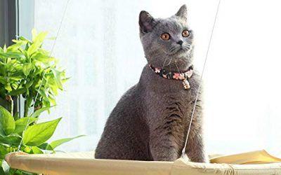 Aurantiaco – 1 Cama Colgante para Gato, Asiento Soleado, Gato o Cachorro, para Montar en la Ventana, Cama para Mascotas, Hamaca, Cama para Gatito