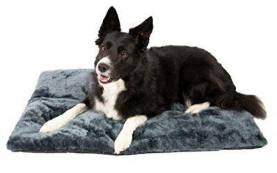ZOLLNER Colchón de Viaje para Perros, Impermeable y Plegable, 60×90 cm , mascotas