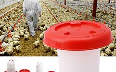 ypypiaol – Comedero para Bebedero de Aves de Corral, gallina, Pan, Comida y Agua, Suministros de riego para Animales