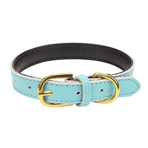 Mcdobexy Classic Soft Padded Leather Dog Collar for Cats Puppy Small Medium Larger Dogs
