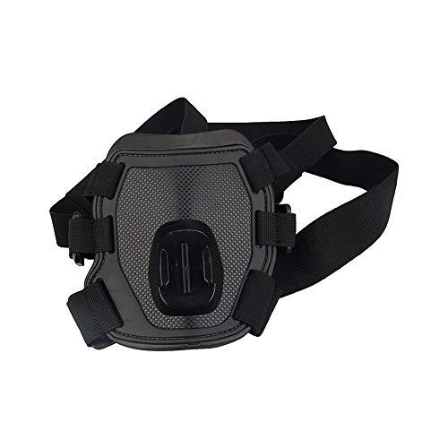 HEIRAO Cinturón de arnés para Perros Puppy Harness para Caminatas de Entrenamiento al Aire Libre