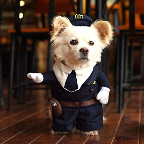 Disfraz para mascotas pequeñas, de la marca Hoopet