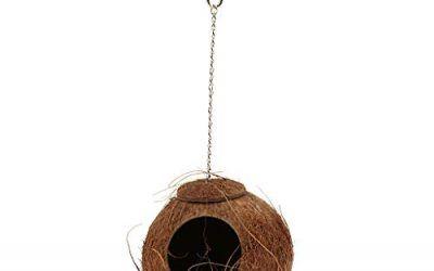 perfk Juguete Natural de Cáscara Casa Jerarquía Pájaro Coco para Oscilación Loro Animal Doméstico