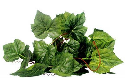 Generic Reptil Terrarium Vivarium / Uvas Vides de Hiedra de Ornamento Planta Hiedra Vides Artificial Verde – 1