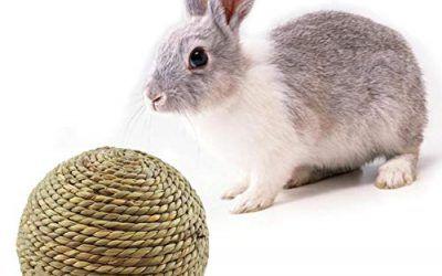 Chalkalon Bola de Hierba Natural Conejo Juguete Masticable para Mascotas Pequeñas Limpieza de Dientes para Conejos, Hámsters y Otras Mascotas Pequeñas
