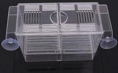 Yinong – Caja para Acuario para cría de Peces – Caja para incubadora Multifuncional con pipetas pastoras , mascotas
