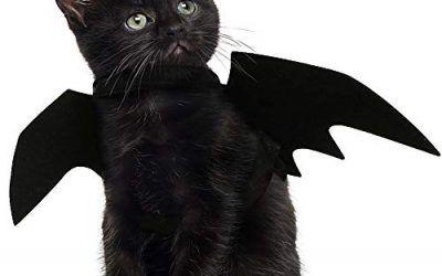 JDYW Disfraz de Gato Mascota Alas de murciélago para Perros Disfraz de Disfraz de Mascotas (Alas de murciélago)